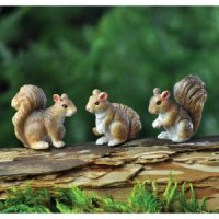 Squirrel Set/3