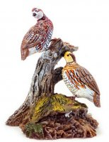 Pair of Quail on tree