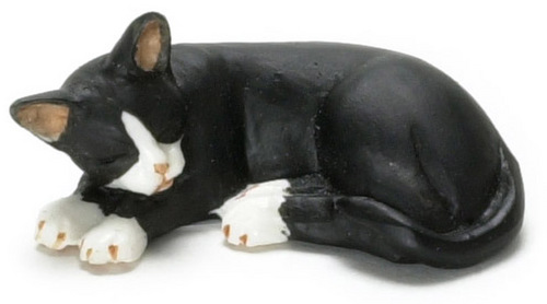 Sleeping cat/black with white socks