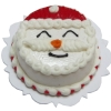 Jolly Christmas Cake