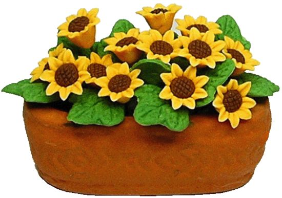 Sunflowers/clay planter
