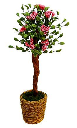 ornamental flowering tree